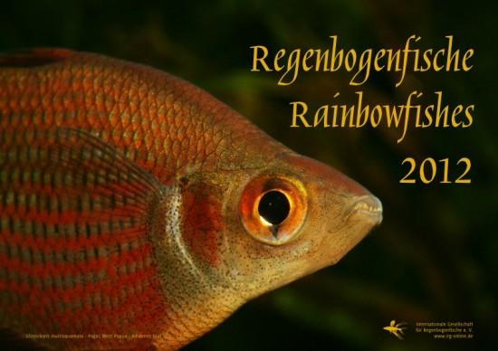 irg-kalender2012_00_klein